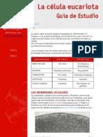 APUNTES CITOLOGÍA parte 1-1