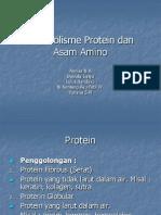 metabolismeproteindanasamamino-121012235908-phpapp01
