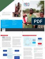 Folder Skillful Parenting Africa