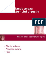 109265868-LP-07-Anexe-Digestiv