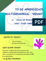 Proyecto SENSO