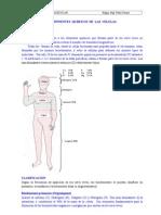 Tema 2 Bioelement