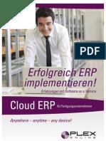 Plex System - Erfolgreich ERP implementieren!
