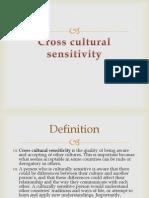 Cross Cultural Sensitivity