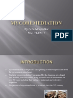 mycoremediation.ppt