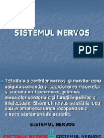Curs 1 Sistem Nervos