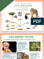 losseresvivos-101008123732-phpapp02
