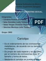 Cariotipo Bandeo y Cromatina Sexual