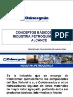 Conceptos Básicos de la Industria Petroquímica y su alcance