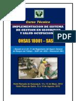 Curso Implementacion de Sistema de Gestion en Seguridad y Salud Ocupacional