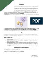 ACIDOS NUCLEICOS RENZO 1.pdf
