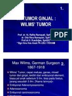 Mk Nef Slide Tumor Ginjal Wilms Tumor