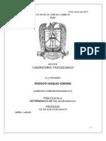 practica 1 reporte.docx
