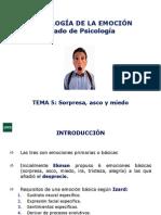 Diapositivas Carmen Sanchez Gombay Tema+5