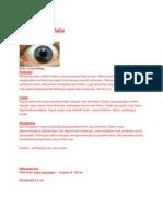 Melanoma Mat1