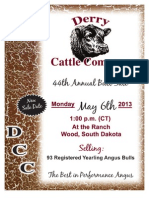Derry Cattle Co.