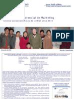 IGM Niveles Socioeconomicos 2010.pdf