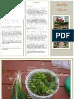 BeeRay Farms Brochure