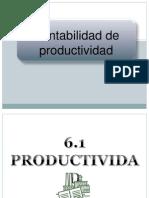 Contabilidad de La Productividad