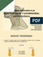 anatomía aplicada a la anestesia local y locoregional