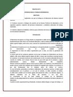 PRACTICA Nº 1 quimica.docx