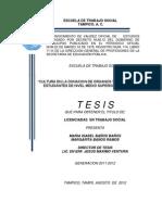 TESIS 210712