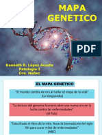 Mapa Genetico 2