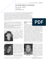 Levental Et Al-soft Matter 2007 2