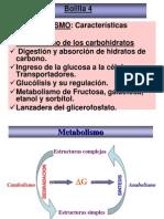 2012 Metabolismo, Dig y Abs de CH