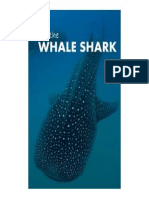 Protection and Conservation Act  of Whale Shark in Donsol, Sorsogon