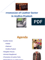 Leather Sector in AP