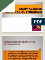 12adaptacionesmaternasalembarazo-090324181831-phpapp01