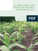 Semis Direct Couverture Vegetale