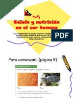 Célula y nutrición en el ser humano, 8vo