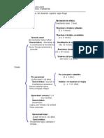 Esquema de Los Estadios Del Desarrollo Cognitivo Segn Piaget DISERTACIN (1)