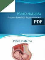 PARTO NATURAL.ppt