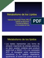 Metabolismo de los L-¦ípidos definitivo