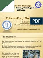 Trituracion y Molienda.