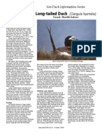 Long Tailed Duck Ltdu_sppfactsheet