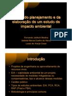 Etapas de Planejamento e Elaboração de Estudo de Impacto Ambiental
