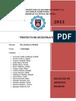 Proyecto Ulcera Gastrica en Ratas Por Aines