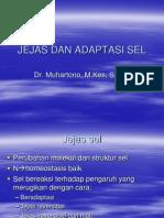 Jejas Dan Adaptasi Sel