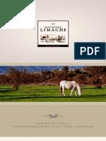 Fotos Hacienda Limache
