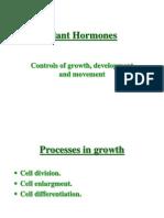 Hormones Plants