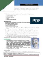 2.- Cirugia PlÔÇástica