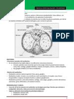 4.- Cirugia Pulmonar