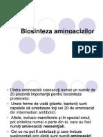 9 Biosinteza aminoacizilor prezentare(1)