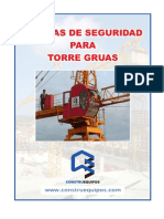 Manual de Seguridad Torre Gruas 2011