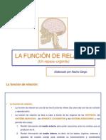 lafuncionderelacion-111109131549-phpapp01