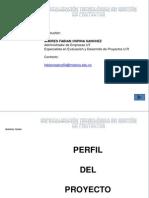 PRESENTACIÓN PERFIL DE LOS PROYECTOS